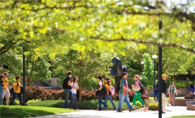 WSU campus in spring